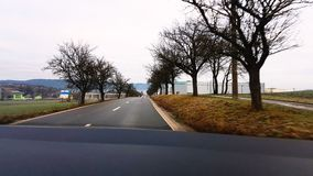 Trees along the road. Beautiful scenery of trees along the road Royalty Free Stock Photo