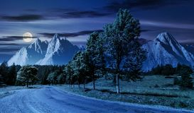 Trees along the road in to the mountains at night. In full moon. composite mountainous landscape with rocky peaks. beautiful summer nature with gorgeous sky stock image