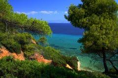 Free Trees And Sea Royalty Free Stock Photo - 3040965