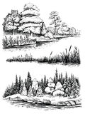 Trees And Water Reflection, Vector Illustration Set. Landscape With Forest, Hand Drawn Sketch. Royalty Free Stock Image