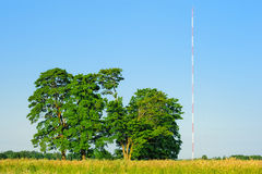 Trees and Antenna Royalty Free Stock Images