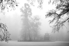 Trees and Arbour in the Mist. Tall trees and a small chinesse arbour in the mist Royalty Free Stock Photo