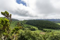 Trees around the Alferes Caldera. Trees and pastures leading up to the rim of the Alferes Caldera in Sao Miguel stock photography