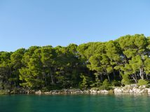 Trees around a Croatian bay in the Mediterranean Royalty Free Stock Photos