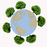 Trees  around the Earth globe   on white backgr Stock Image