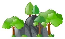 Trees around gray stone Stock Photography