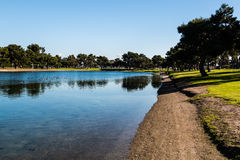 Trees Around Model Boat Pond in San Diego Stock Image