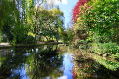 Trees around New River Walk, London. Trees and foliage with reflections in canal water with ripples at the New River Walk, Canonbury, London royalty free stock photos