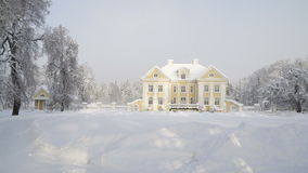 The trees around the Palmse manor with snow. The thick snow coming from the snow fall during winter season stock video