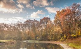 Autumn has arrived with colours Royalty Free Stock Photo