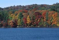 Trees in Autumn Foliage. Autumn on the Lake stock photo