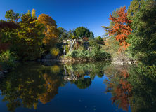 Trees in autumn reflecting in a pond. Frankfurt am Main, Germany Royalty Free Stock Images