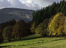 autumn Winterberg Sauerland Germany Royalty Free Stock Images
