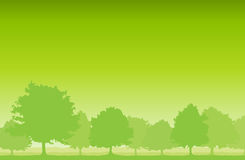 Trees Background Royalty Free Stock Photos