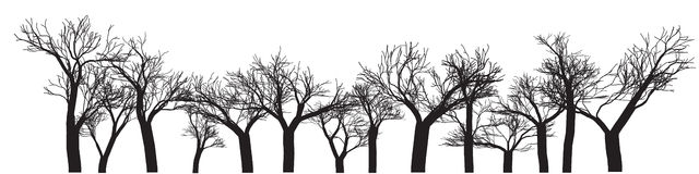 Trees Background Banner. Digital Wall Art, Vector Outline Drawing Stock Photography