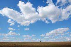 Autumn and sunny day Stock Photo
