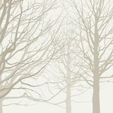 Trees background Stock Images