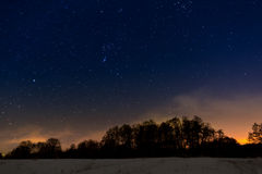 Trees on  background of the night starry sky Royalty Free Stock Photo
