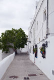 Trees in the background of a stree. T of white houses on a cloudy day. It is situated in a village in Spain called Vejer de la Frontera Royalty Free Stock Photography