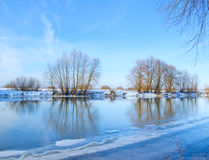 Trees on the bank of river. Blue sky and a trees on the bank of river stock image