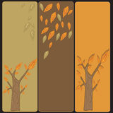 Trees banners. Set of banners with trees Royalty Free Stock Photo