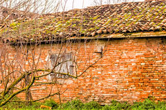 Trees with bare branches in front of country house in ruins Royalty Free Stock Photo