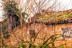 Trees with bare branches in front of country house in ruins Royalty Free Stock Photos