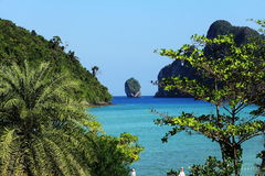 Trees and Beach, Islands Phi-Phi, Thailand, Asia Royalty Free Stock Photos