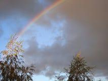 Trees and beautiful rainbow, Lithuania stock photo
