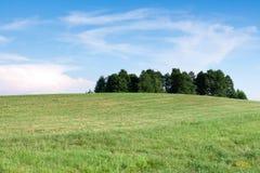 Trees. Beautyfull summer in Mazury, Polska Stock Photo
