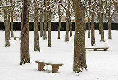 Trees and benches under the snow Royalty Free Stock Photos