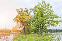 Free Trees Between Two Pond With Path, Czech Landscape Stock Photo - 118436350