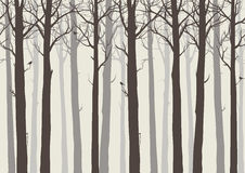 Trees with birds. Background seamless horizontal, trees with birds, brown colors, vector illustration.It can be used as wallpaper in the interior Stock Images