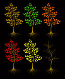 Trees on a black background. Royalty Free Stock Photos