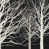 Trees on black background Royalty Free Stock Photos