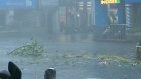 Trees blowing in surge of typhoon Wind and Rain. New Taipei City, Taiwan.  September 27, 2016: Trees blowing in surge of typhoon Wind and Rain in city streets stock video