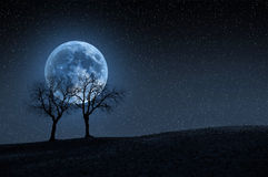 Trees in blue moon. Night fantasy background with full blue moon, trees and starry sky Royalty Free Stock Images