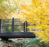 Into the Trees. Bridge heading into bright yellow autumn trees Royalty Free Stock Photos