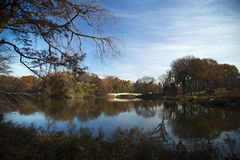 Trees and bridge reflected in the transparent surface of the lak Royalty Free Stock Image