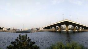 Trees and Bridge in waterfront at morning loop. Trees and Bridge in waterfront at morning seamless loop stock video