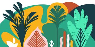 Trees are broad-leaved tropical, ferns. Flat style. Preservation of the environment, forests. Park, outdoor. Vector illustration Royalty Free Stock Image