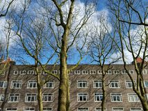 Trees and building, Amsterdam, Holland Royalty Free Stock Image