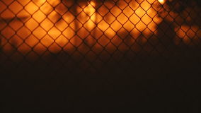 Trees and buildings behind a fence. At night on a background of orange light camera switches focus stock footage