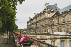 Trees and buildings in Luxembourg Gardens in Paris, France. View of trees and buildings in Luxembourg Gardens in Paris, France stock photo