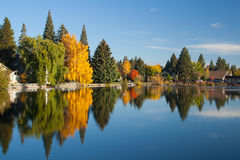 Trees and buildings reflected in lake Royalty Free Stock Image
