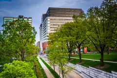 Trees and buildings seen from the Capitol Complex in Harrisburg, Royalty Free Stock Photography