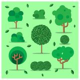 Trees and bush. Colorful illustrations. vector illustration