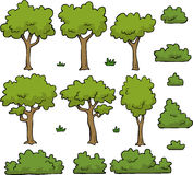 Trees and bushes Stock Image