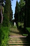 Santa Clotilde gardens. Trees, bushes and statues in Santa Clotilde gardens, Lloret de Mar , Spain stock photo
