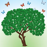 Trees and butterflies. Stock Image